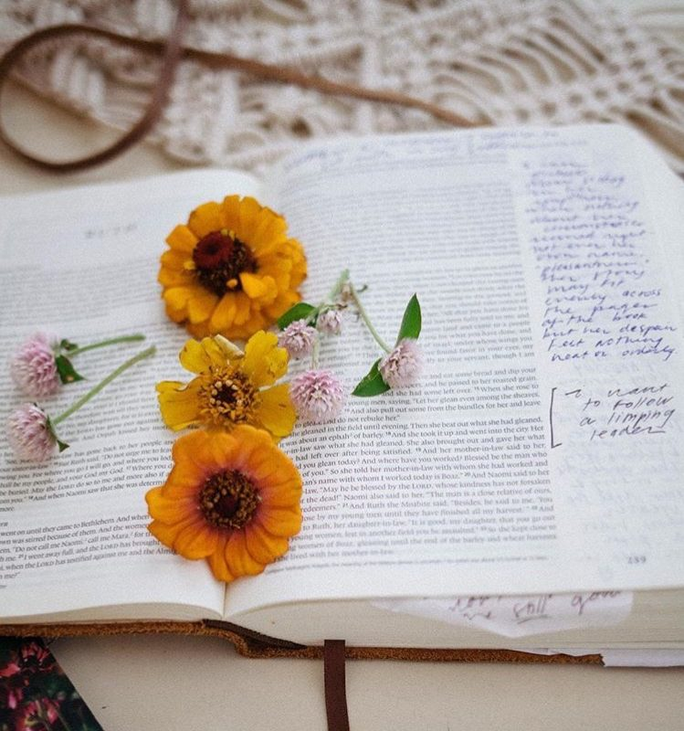 How to Study Your Bible: Suggested Bible Study Resources + Devotionals (GIVEAWAY)